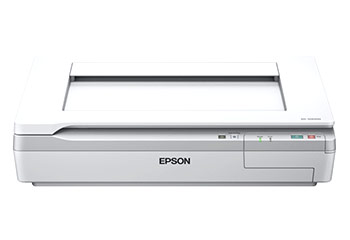 Download Epson DS-50000 Driver Free